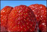 Strawberries a delicious desert
