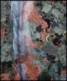 Ice on granite - Lysekil
