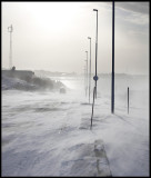 Entering the Vadsö harbour area - strong northern wind