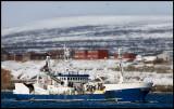 Big fishing vesse Havbas entering Vadsö harbour