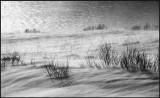 Coastal snowdrift in Varanger - Norway
