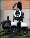 Makro - 180/3,5L and 100/2,8 with flashes + Low tripods from Bilora and Velbon