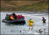 Nathan Russ helping a Zodiac with a wet landing on Macquarie island