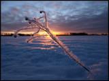 A very cold sunset at Djurle myr south of Växjö