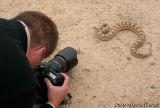Snake surprise in Iran 2003