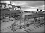 Ferry terminal in Tallinn - Estonia