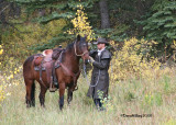Adams Lodge Outfitter's Horse Gallery
