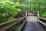 Stairs to the Falls