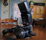 Canon Pro 1 with the 420EX