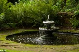 Coton Manor Gardens - August 2010