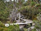 Bridge over Pelion Creek