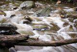 Fast-moving stream