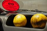 14 1235 Sarah's grapefruits