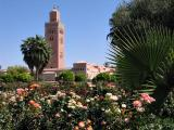 Marrakech La Koutoubia_7705.jpg