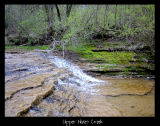 Upper Hines Creek (Yes, it is in my back yard)