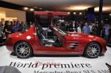Mercedes Benz_SLS ANG_2.JPG