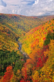 West Virginia Highlands Autumn