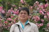 Mum near Cherry Blossom