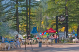 zP1060237 Craft fair music food at Izaac Walton Inn in Essex Montana.jpg