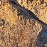 zComp2 P1060889 Rocks by Fz50.jpg