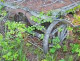 z IMG_0107 Old wagon ages at SanSuzEd.jpg