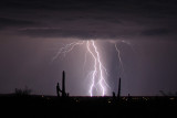 IMG_9995a Lightning.jpg