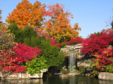 Fall at the zoo