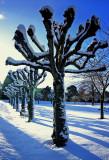 Banchory--War Memorial-Park