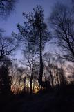 Hogmanay  - Sunrise at Loch Kinord & Cambus 0'May