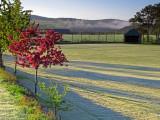 Kincardine O'Neil - frosty playing field