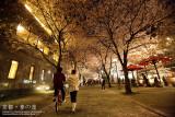 kyoto_059.jpg