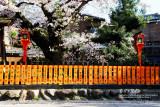 kyoto_078.jpg