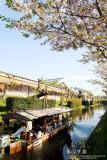 kyoto_139.jpg