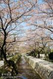 kyoto_147.jpg