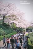 kyoto_196.jpg