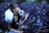 品果兔•南投