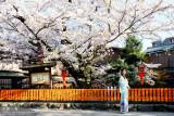京都•2009春