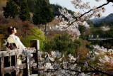 kyoto_016.jpg