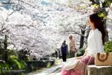 kyoto_032.jpg