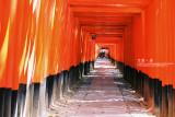kyoto_043.jpg