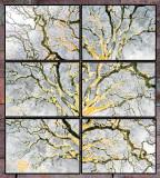 tree_series