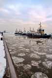 Tugs on the Elbe waterfront