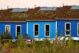 Green houses near Hannover