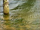 Water sand piling.jpg