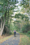On the South County Trailway...