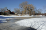 L'étang de la maison de l'arbre