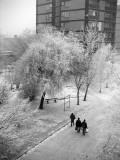 Hungary Winter