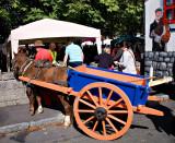 Horse + Cart 4