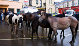 Horse Fair