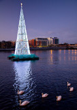 Tallest Christmas Tree 2